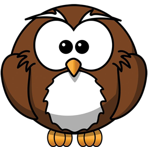 village owl tv logo